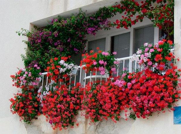 Зеленый дизайн балкона в квартире