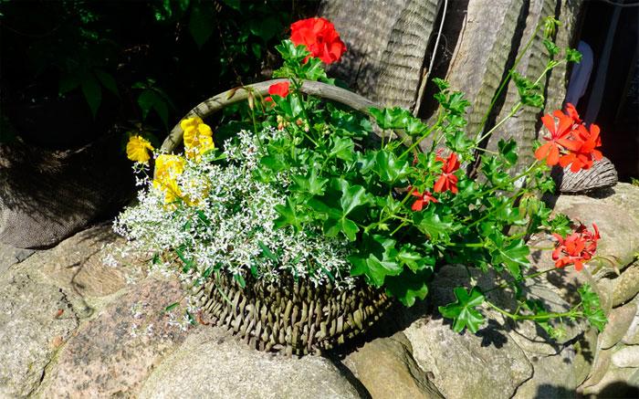 Садовые украшения из старой корзины