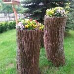 Клумбы в стволах старых деревьев