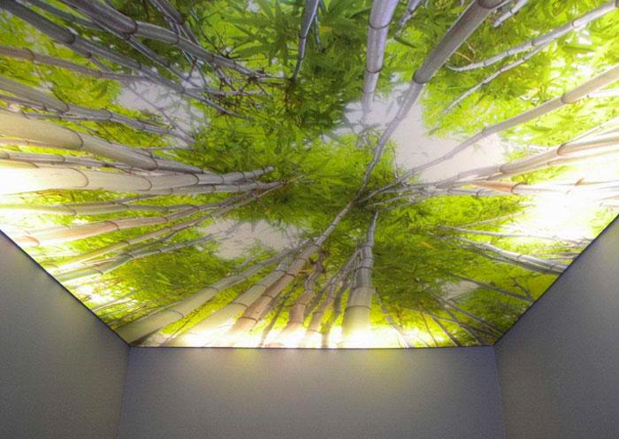 Зеленый цвет потолка