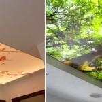 Натяжные потолки – какие лучше выбрать
