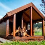 Как сделать будку для собаки своими руками – фото