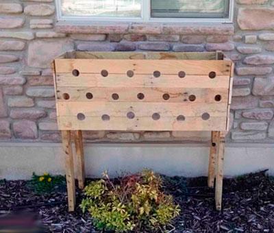 Вертикальная клумба для петунии из деревянного ящика