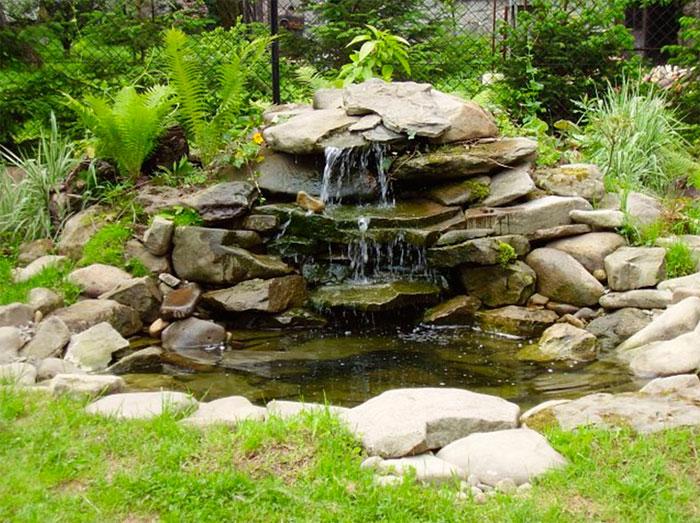 Свободный и естественный пруд