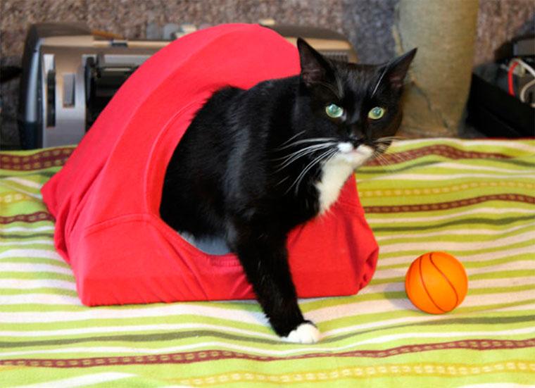 Домик для кошки своими руками из футболки