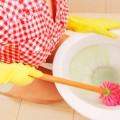 Чем очистить налет в унитазе?