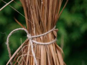 Как связать декоративные травы на зиму