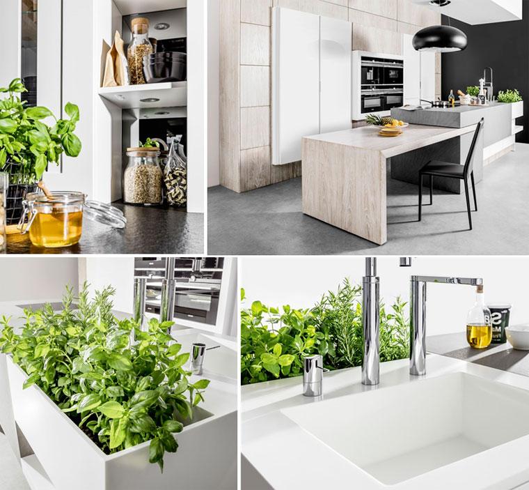 Кухня в белом цвете дизайн, фото