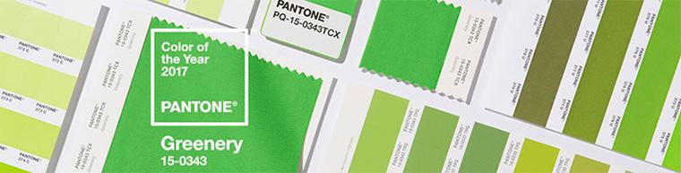 зеленый цвет от института Pantone