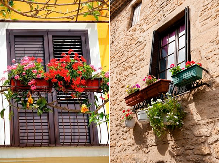 Растения для французского балкона