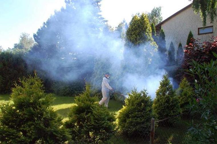 Химическое средство от комаров на даче по периметру