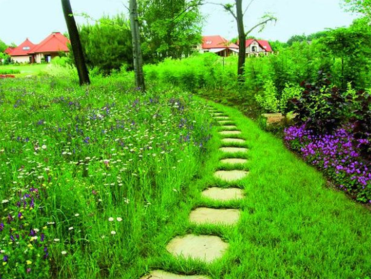 мавританский газон, фото
